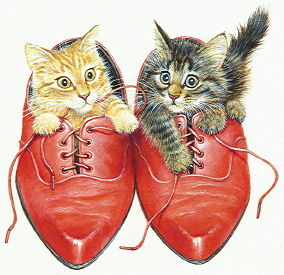Copyright Lesley Ivory - Kittens in Ron's red shoes
