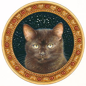Copyright Lesley Ivory - Alice's cat Starlight