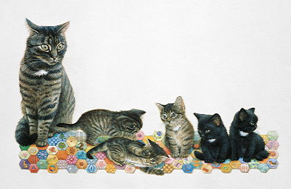 Copyright Lesley Ivory - Muppet and her five kittens