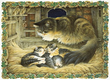 Copyright Lesley Ivory - Away in a Manger, Agneatha and her kittens