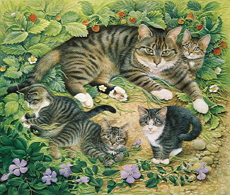 Copyright Lesley Ivory - Gemma with her kittens in wild strawberries and periwinkles