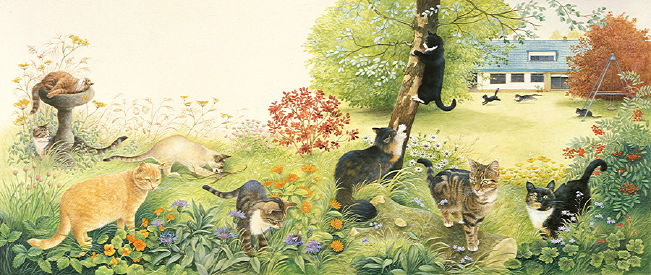 Copyright Lesley Ivory - All the cats in the garden